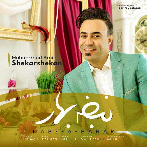 دانلود آهنگ جدید محمد امین شکرشکن بنام نبض بهار